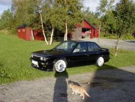 bmw-pitbull-36